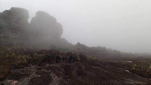 s-ロライマ山(3日目) (48)