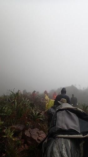 s-ロライマ山 5日目 (7)