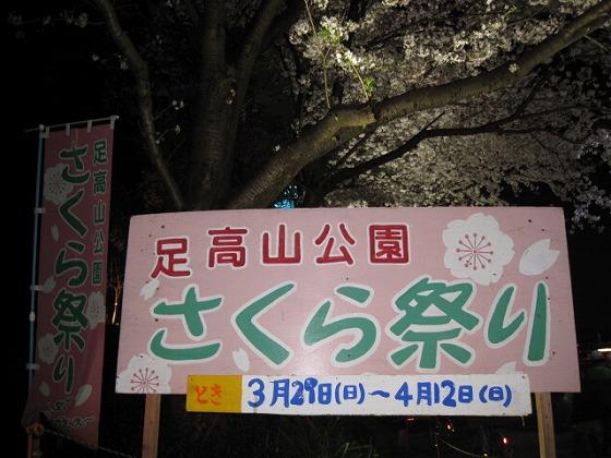 2015☆足高夜桜