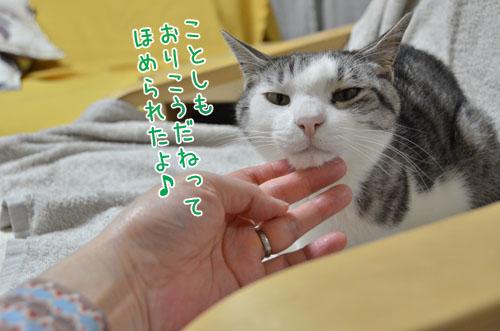 DSC_4295_2.jpg