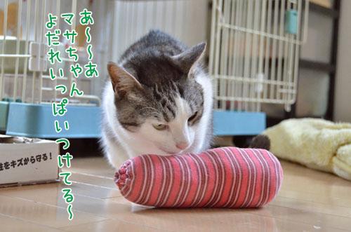 DSC_4624_2.jpg