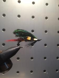 peacockfly201506