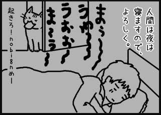 人間は夜は寝ますので、よろしく。 うおぉぉう〜まぅ〜 起きろ!nobi8nめ〜