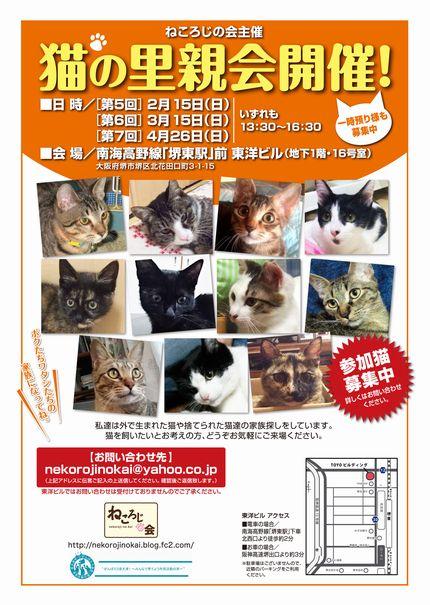 「参加猫募集」文言入り430