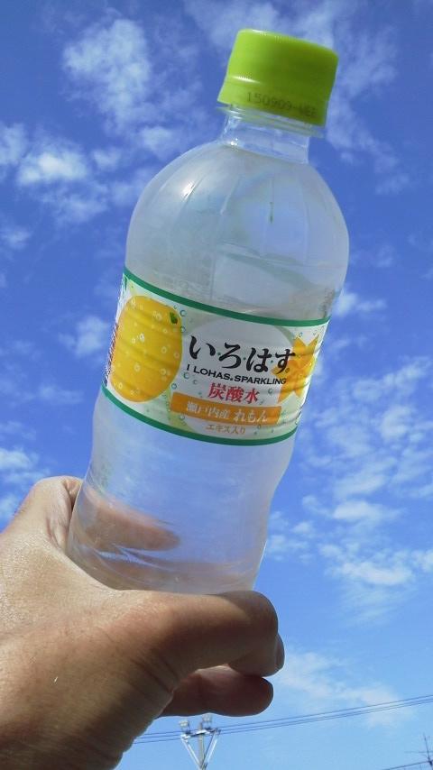 2015レモン2