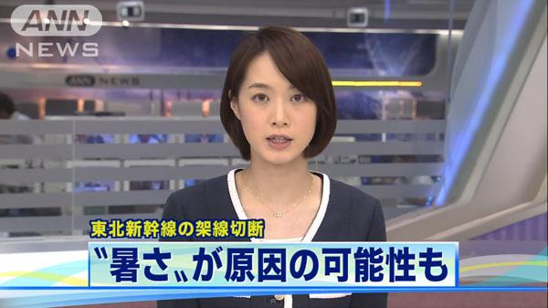 0220_Touhoku_Shinkansen_teiden_unten_miawase_201504_c_01.jpg
