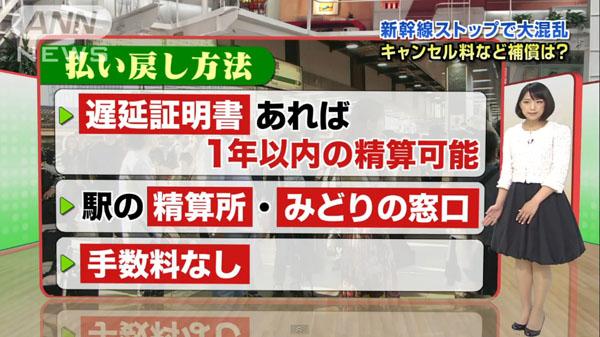 0220_Touhoku_Shinkansen_teiden_unten_miawase_201504_d_02.jpg
