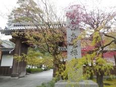 永観堂(1)