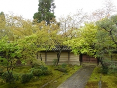 永観堂(5)