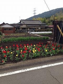 写真 2015-04-12 14 29 00