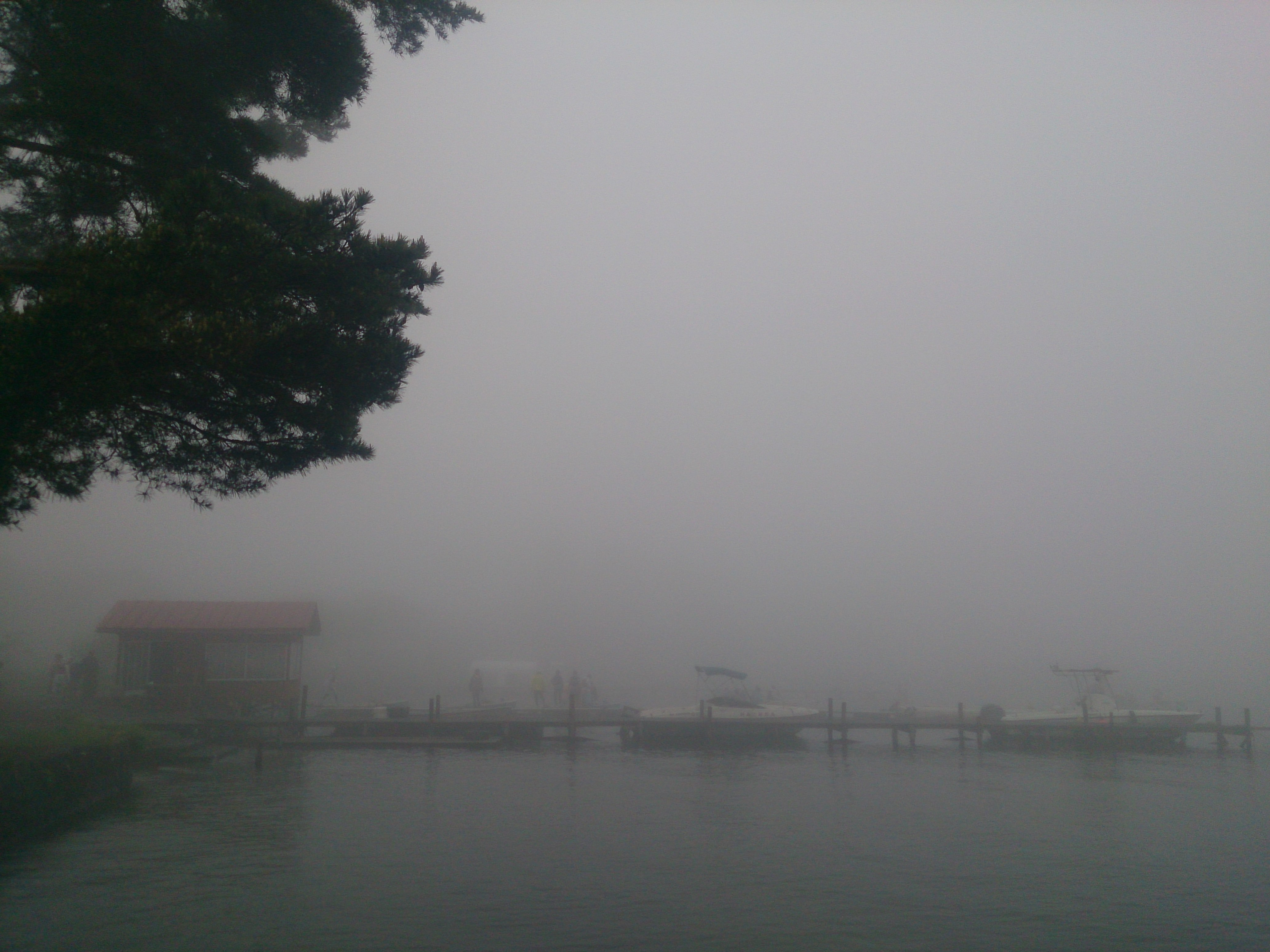 20150516 隣の桟橋(霧が深い)