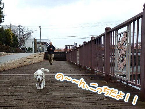 2015・01・11北堀2