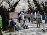 2015・04・04桜まつり4.