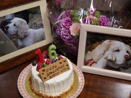 2015・05・15ケーキ