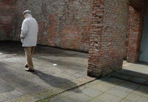 高齢者 保険 プレミアム