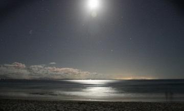 月光 夜 光