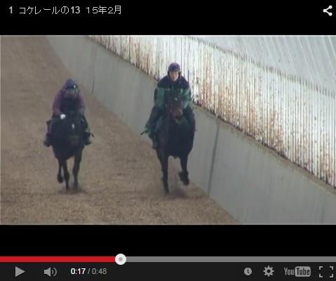 ダイゴ2月動画