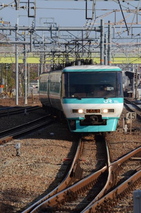 DSC_5602.jpg
