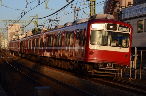 DSC_6383.jpg