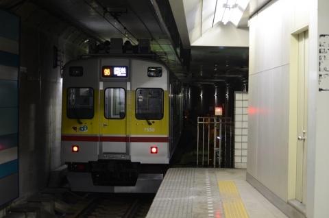 DSC_7975.jpg