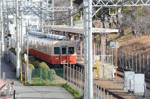DSC_8342.jpg