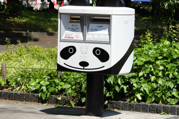 IMG_1162_PandaPost.jpg