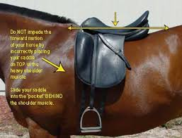 download_20150716174008522.jpg