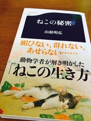 book猫