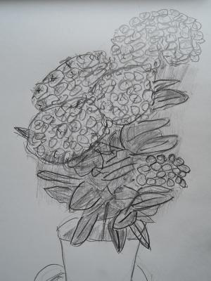 これでもアジサイの花