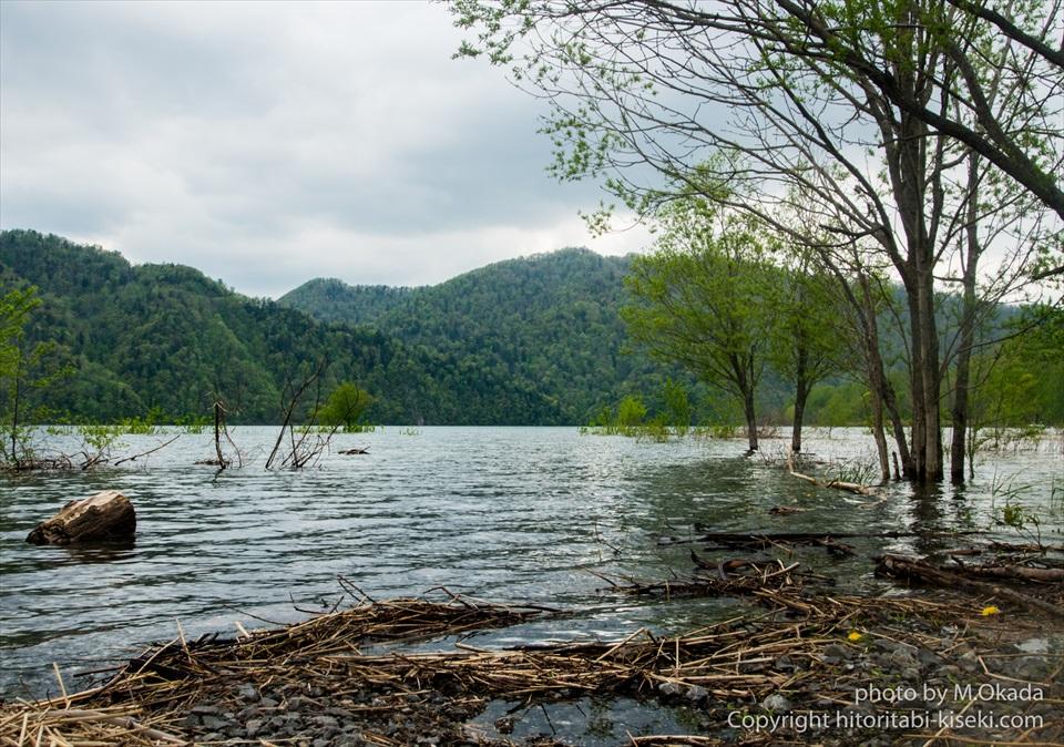 砂利道の先に広がる湖の様子