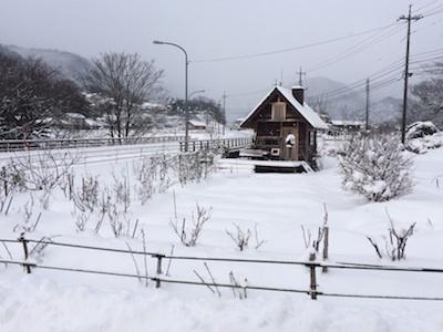 雪270311-3