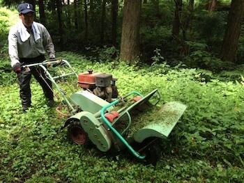 林道の草刈り