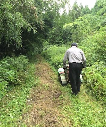 林道草刈り