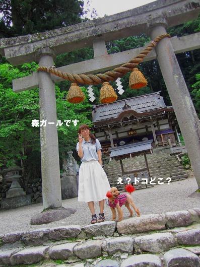 a-IMG_7864.jpg