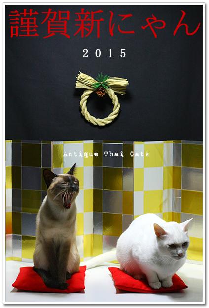 お正月 new year ปีใหม่ 猫 แมว cat 2015 アンティークタイキャットAntique Thai Cats シャム猫 Siamese วิเชียรมาศ タイ Thailand