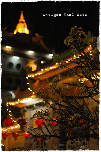 タイ Thai ไทย ワットポーメーン วัดโพธิ์แมนคุณาราม Bhoman Khunaram Temple 普門報恩寺