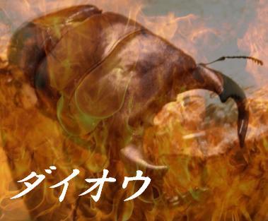 daiou2.jpg