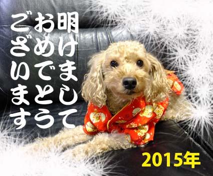 1_20150101213302f38.jpg