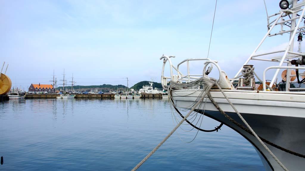 DSC_9379港