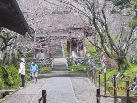 嵐山散策 058