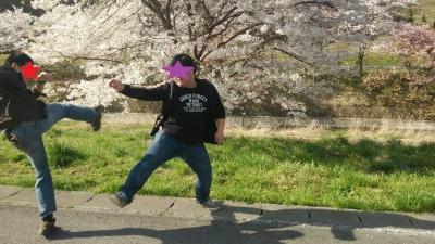 桜めぐり (7)