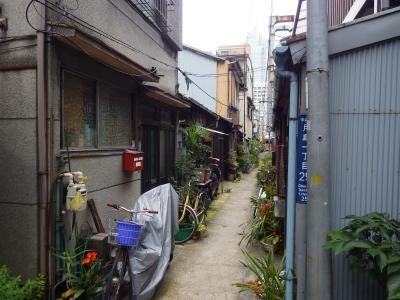 日本ブリッジ (14)