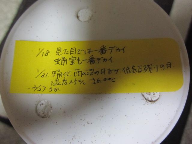 SAI1403-6ふせん