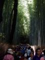 京都27 028
