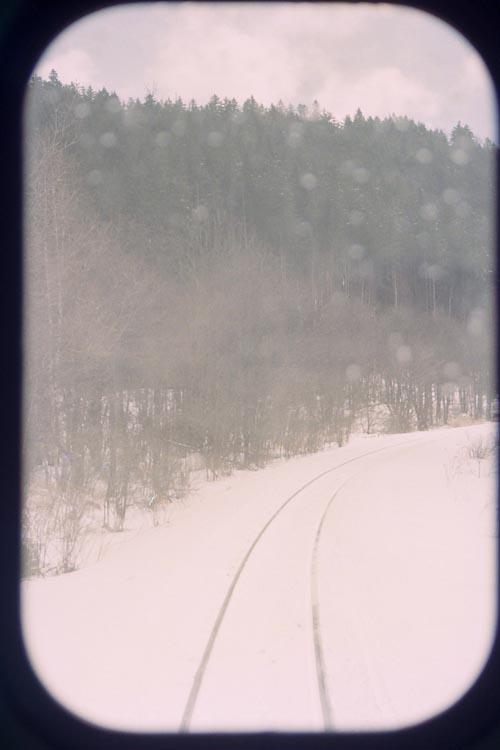 0795_25n_h.jpg