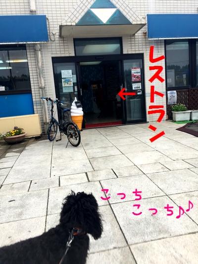 IMG_76961.jpg