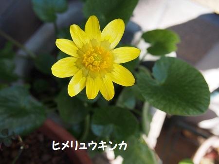 001-4_20150217234354b54.jpg