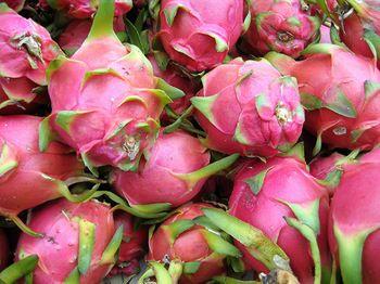 pitayafruit.jpg
