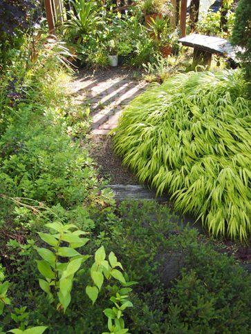 my-garden 031