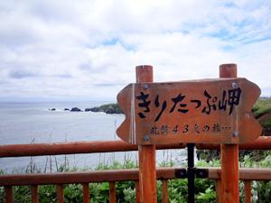 2015chitose_04c.jpg